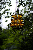 Wine Bottle Chandelier-1492